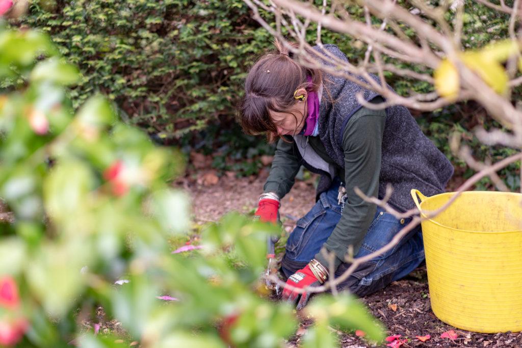 Fiona gardening at Herstmonceux Castle