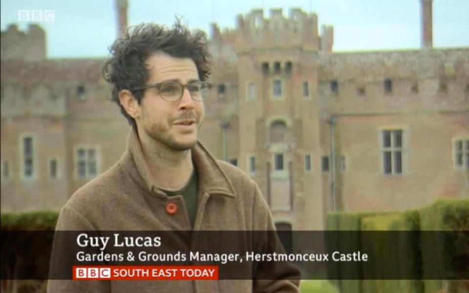 BBC news report on Guy Lucas working on his own at Herstmonceux Castle during UK lockdown